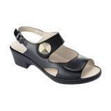 Scholl Arginnis szandál (Női) Papucs, - cipő SCHOLL
